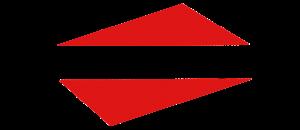 fs beratung logo rauten